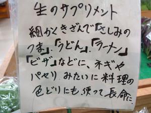 Okinawa201530