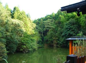 Kyoto16
